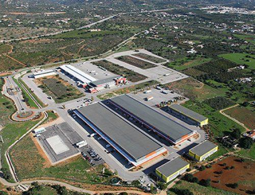 Mercado Abastecedor de Faro mantém desempenhos operacionais positivos